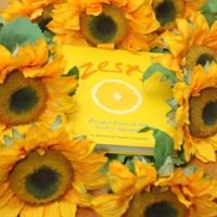 Zest!Cookbook lying in sunflowers.