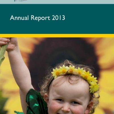 Anual-report-2013.pdf