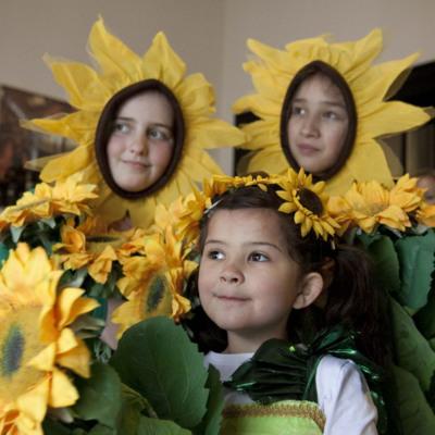 Sunflower days 2012 launch